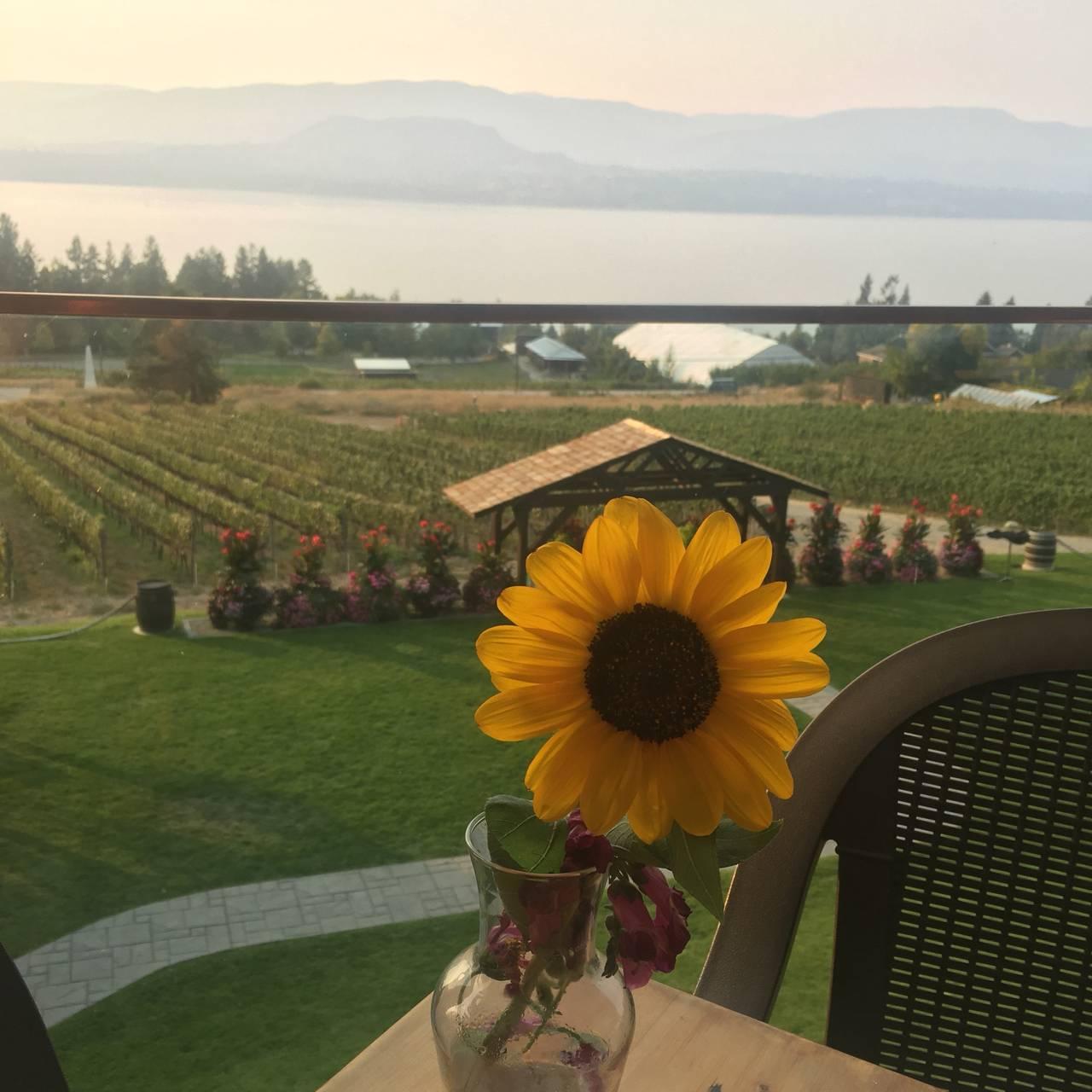 Summerhill Pyramid Winery - Sunset Bistro Restaurant - Kelowna, BC ...