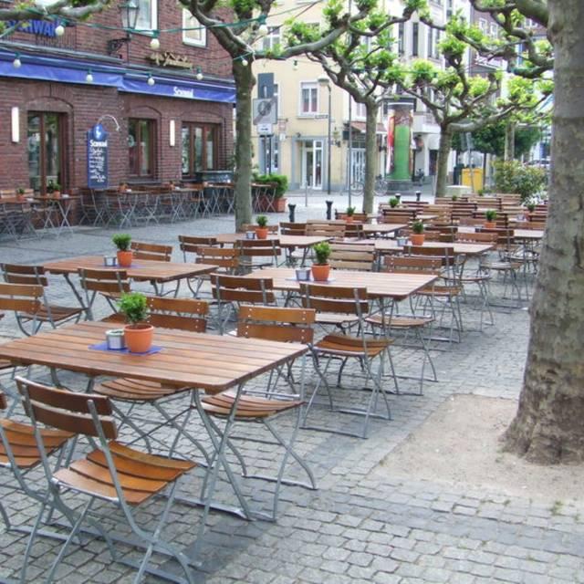 Schwan Am Burgplatz, Düsseldorf, NW