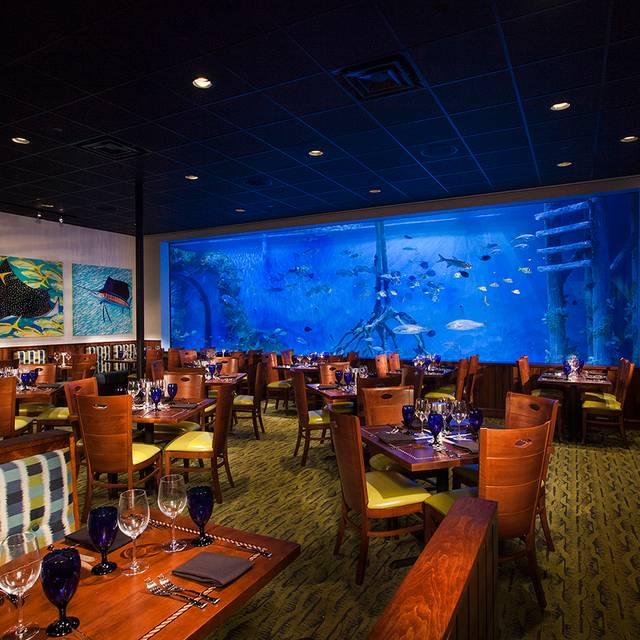 Rumfish Grill Restaurant St Pete Beach Fl Opentable