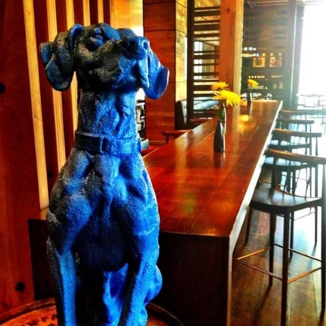 Blue Hound Kitchen & Cocktails Restaurant - Phoenix, AZ