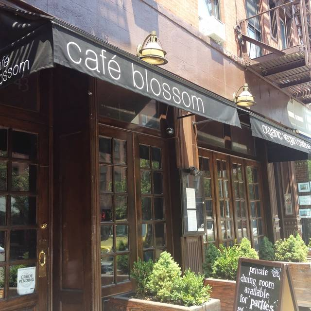 Urban Vegan Kitchen (a.k.a. Blossom On Carmine) Restaurant