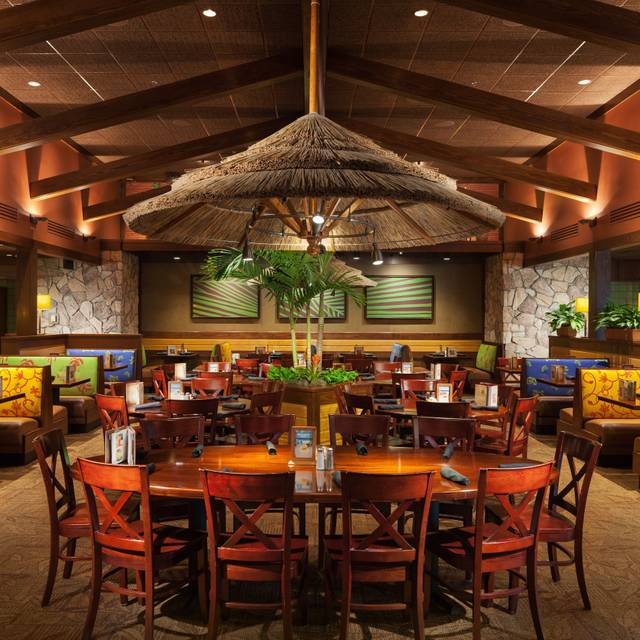 Bahama Breeze Daytona Beach