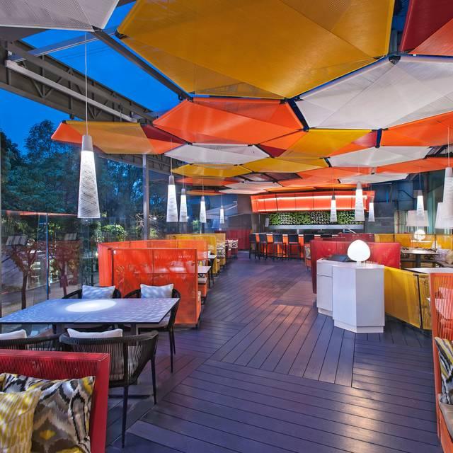 Terrace J By Jose Andres Night - J BY JOSÉ ANDRÉS, Ciudad de México, CDMX