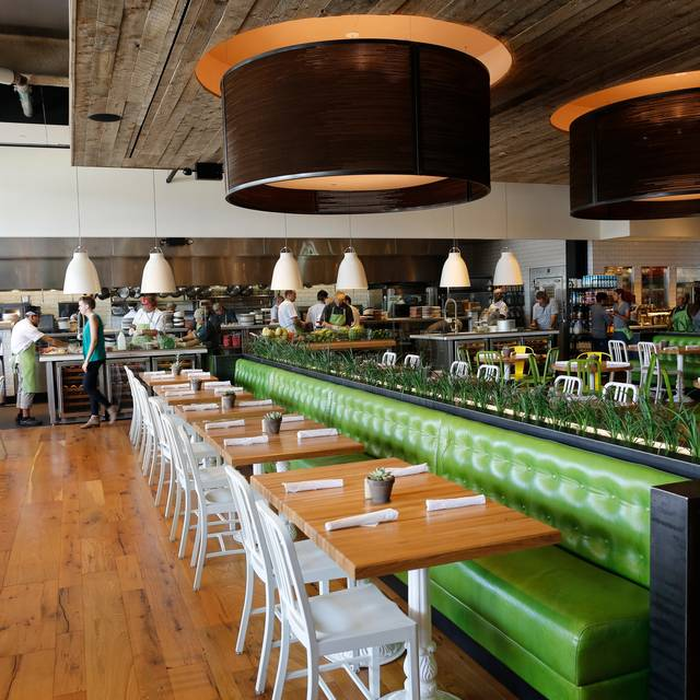 True Food Kitchen Design true food kitchen - houston restaurant - houston, tx | opentable