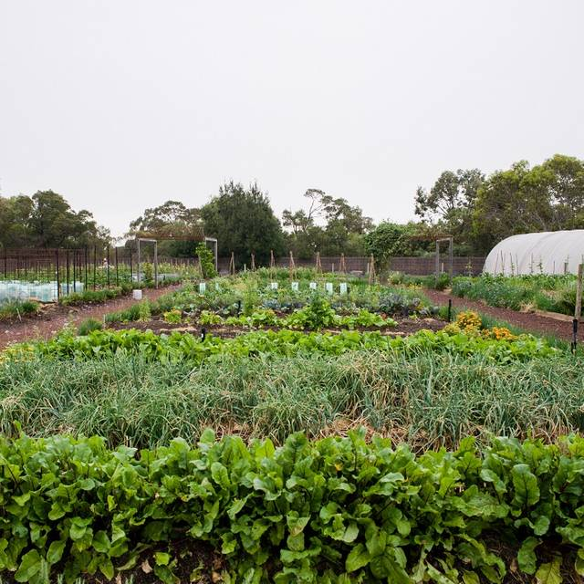 Royal Mail Kitchen Garden - Wickens at Royal Mail Hotel, Dunkeld, AU-VIC