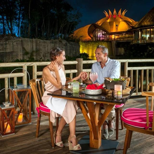 Nektar Terrace - Nektar at Vidanta Riviera Maya, Playa del Carmen, ROO