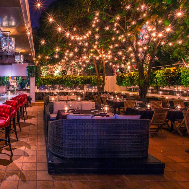 B 226 Oli Miami Restaurant Miami Beach Fl Opentable
