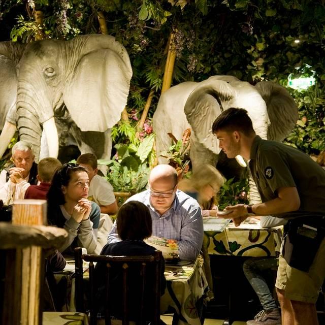 Rainforest Cafe, London, London