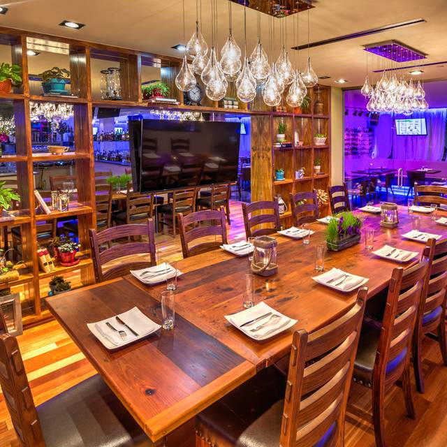Greenhouse - Night Venue - Greenhouse Bistro - Tysons, Tysons Corner, VA