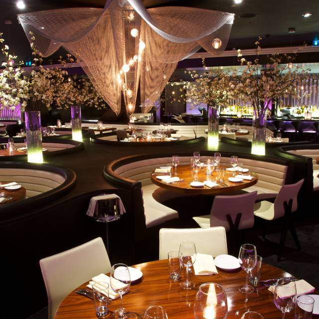 Restaurant: STK, London WC2 | Life and style | The Guardian
