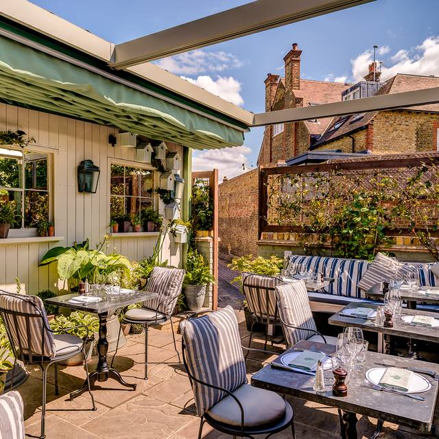 The Ivy Cafe Wimbledon  - Ivy Cafe, Wimbledon, London