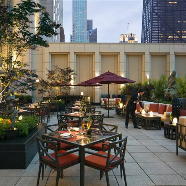 Shanghai terrace restaurant chicago il opentable for Open terrace restaurants