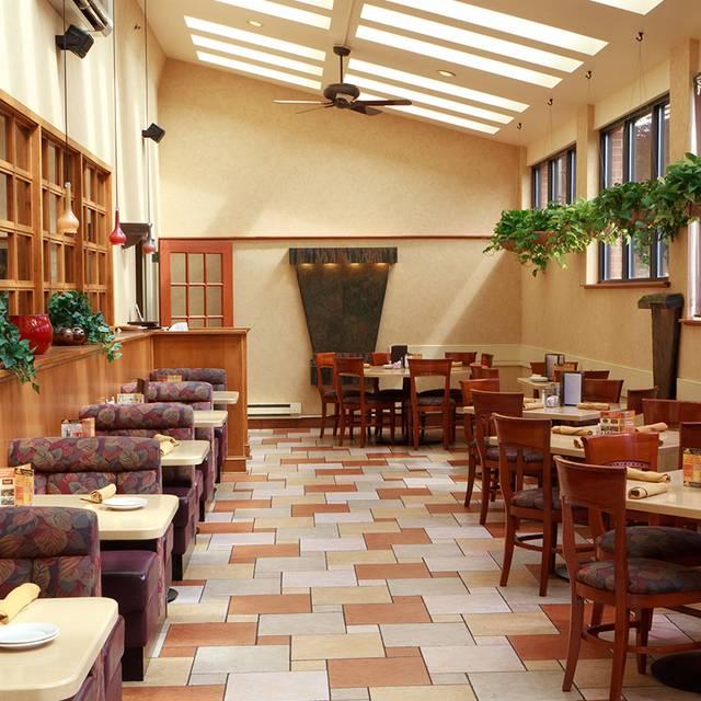 Viva Bistro Lounge Fields Kitchen Bar Wyomissing Pa