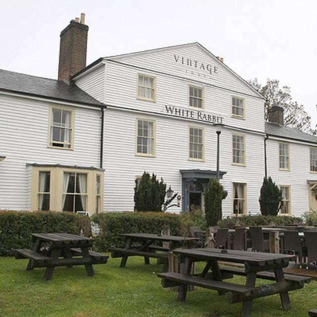 White Rabbit - The White Rabbit, Maidstone, Kent