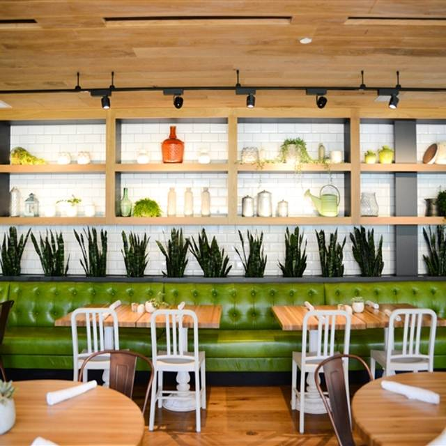 True Food Kitchen Design true food kitchen - pasadena restaurant - pasadena, ca | opentable