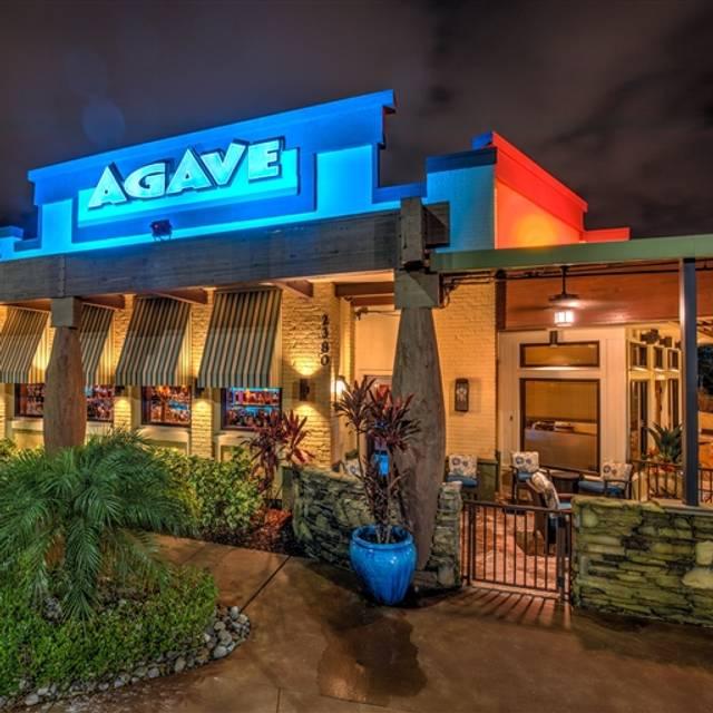 Agave, Naples, FL