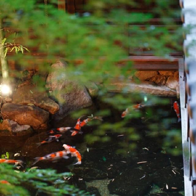庭園 - The  Kawabun Nagoya, 名古屋市中区, 愛知県