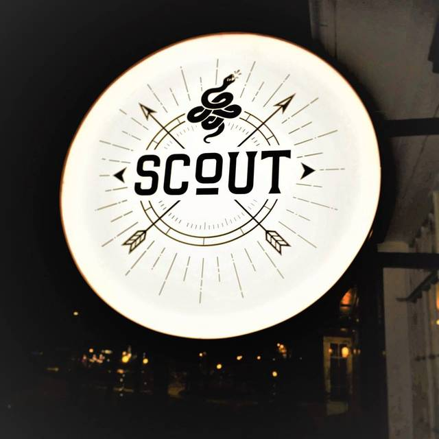 Scout, Decatur, GA