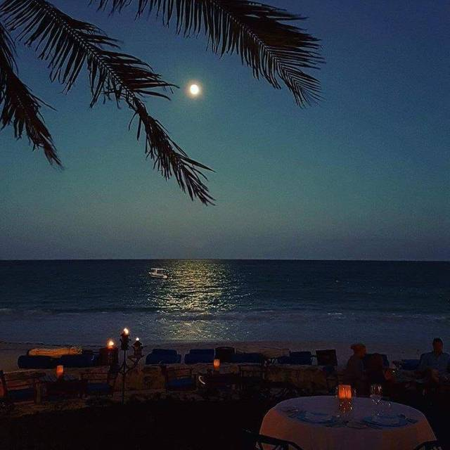Dining In Nature - Pavo Real by the Sea, Playa del Carmen, ROO