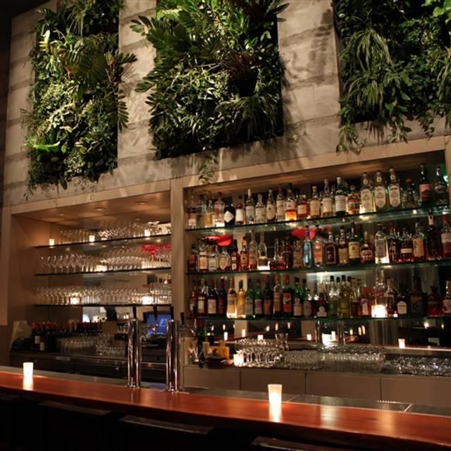 Maven Restaurant, San Francisco, CA