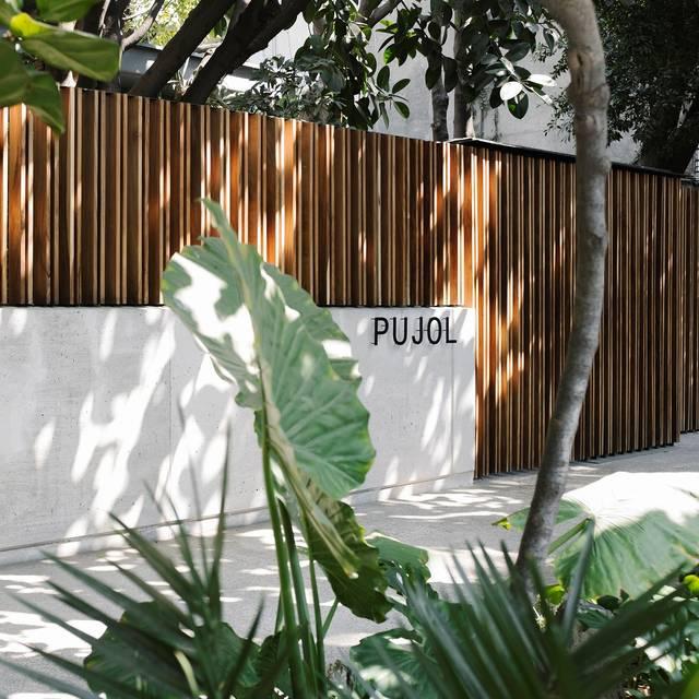 Pujol - Pujol - Tasting Menu, Ciudad de México, CDMX
