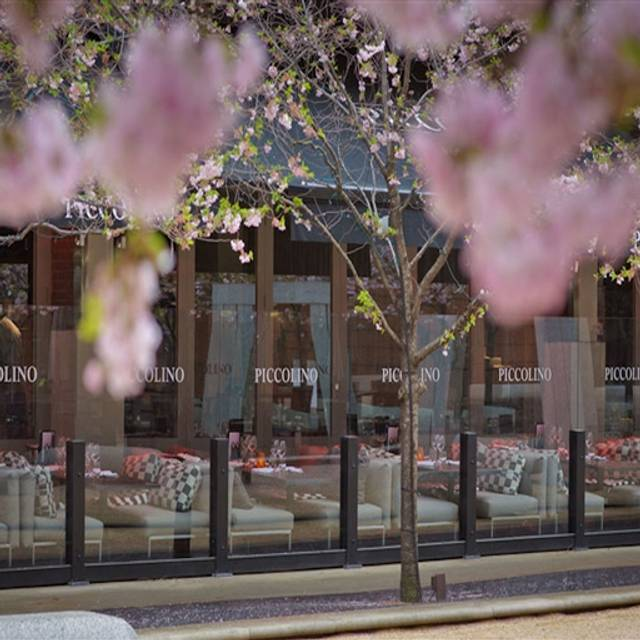 Piccolino Birmingham Birmingham West Midlands OpenTable : 24960422 from www.opentable.com.au size 512 x 512 jpeg 52kB