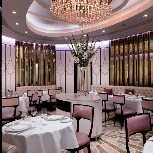 The Oval Restaurant at The Wellesley London, London