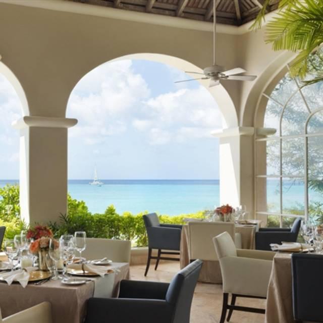 Palm terrace restaurant saint james saint james opentable for Terrace cafe opentable
