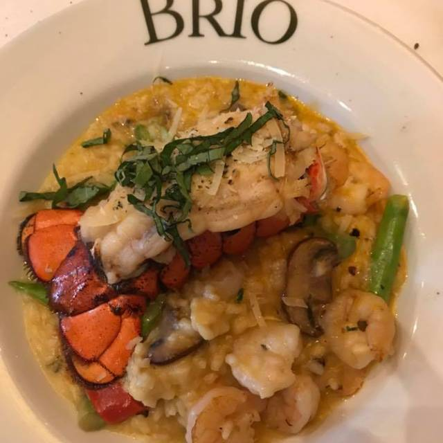 BRIO Tuscan Grille - Pembroke Pines - The Shops at Pembroke Gardens, Pembroke Pines, FL