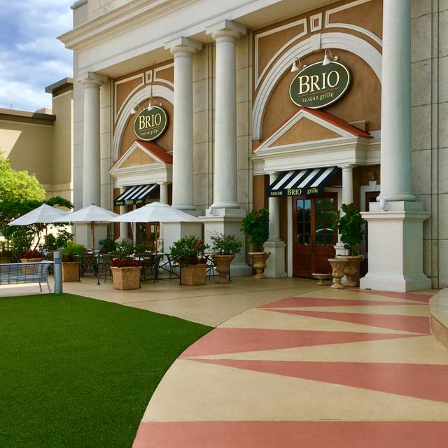 BRIO Tuscan Grille - Orlando - Millenia, Orlando, FL