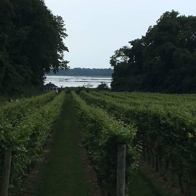 Harmony Vineyards, St. James, NY