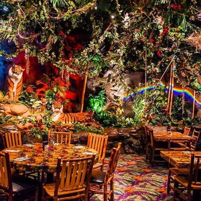 Rainforest Cafe - Chicago Downtown, Chicago, IL