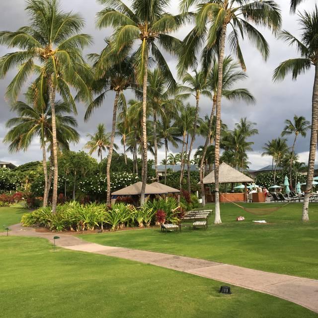 Norio's - The Fairmont Orchid - Kohala Coast, Puako, HI