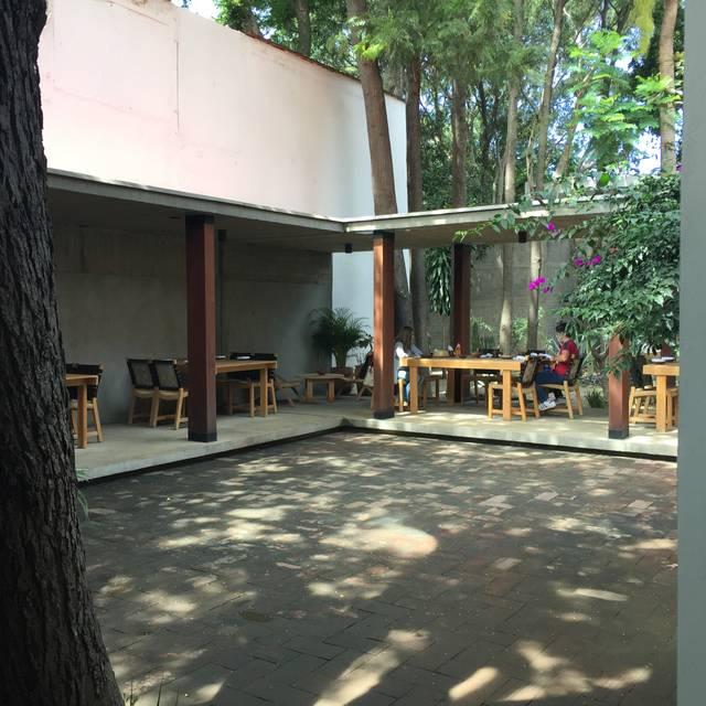 Criollo Restaurante - Oaxaca, OAX   OpenTable