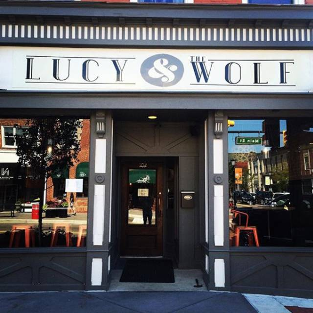 Lucy - Lucy & the Wolf, Northville, MI