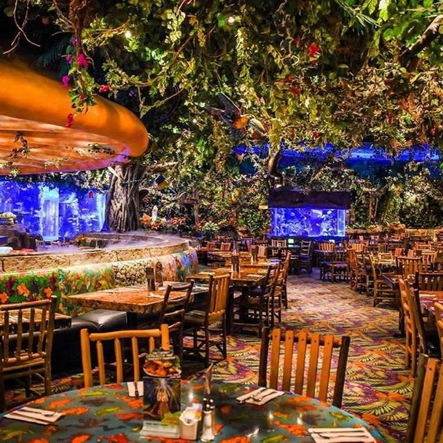 Rainforest Cafe Schaumburg Hours