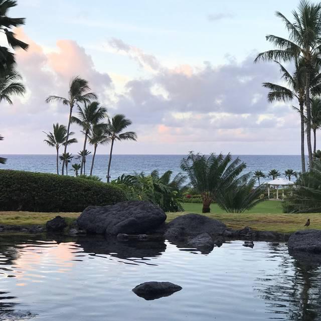 Tidepools - Grand Hyatt Kauai, Poipu, HI