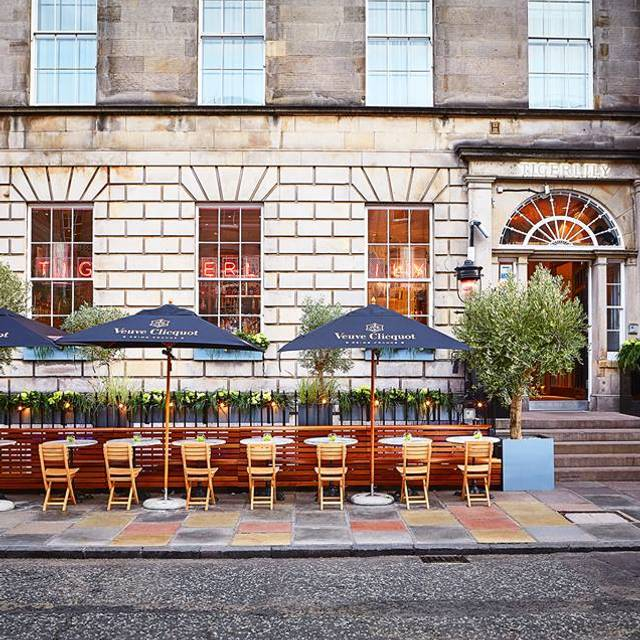 Tiger Front - Tigerlily, Edinburgh