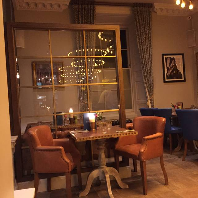 Badger & Co, Edinburgh