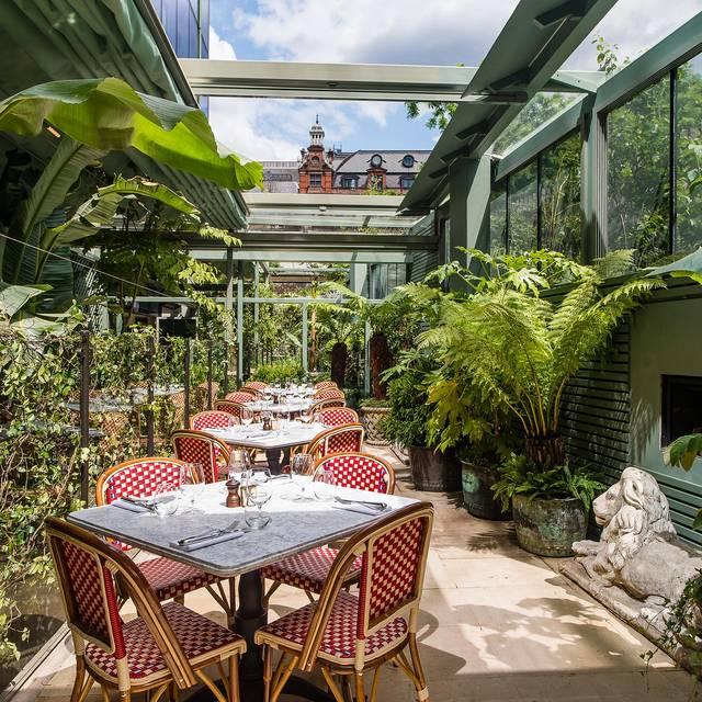 The ivy city garden restaurant london opentable for The balcony menu