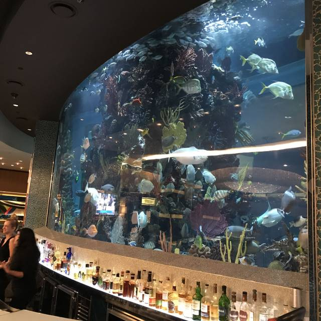 Chart House Restaurant - Golden Nugget - Las Vegas, Las Vegas, NV