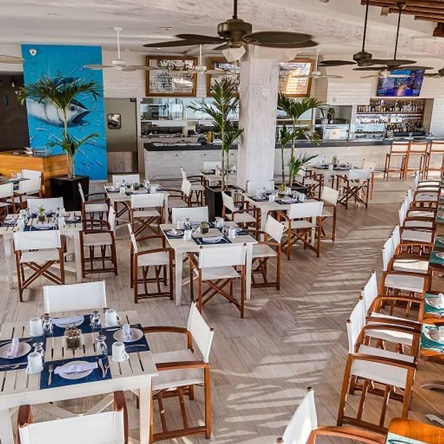 Aleta Seafood Steakhouse Restaurant Cabo San Lucas Bcs