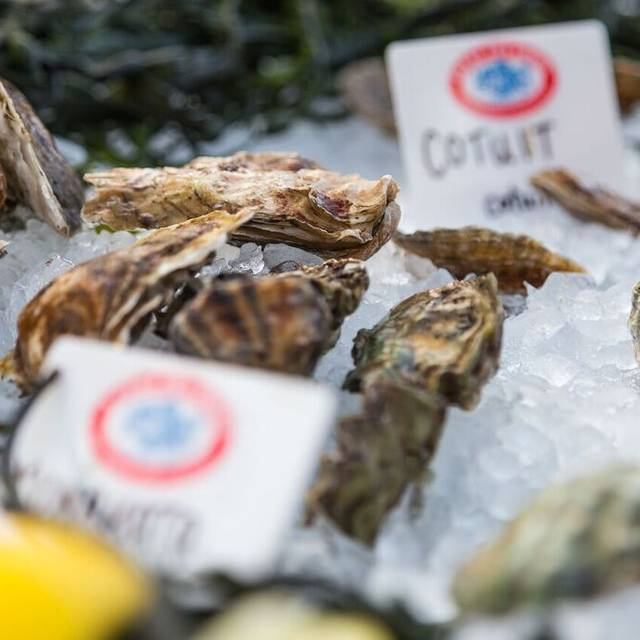 Oysters - Legal Sea Foods - Charles Square, Cambridge, MA