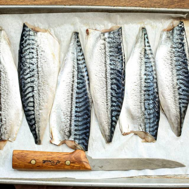 Fresh Mackerel - Ludivine, Oklahoma City, OK