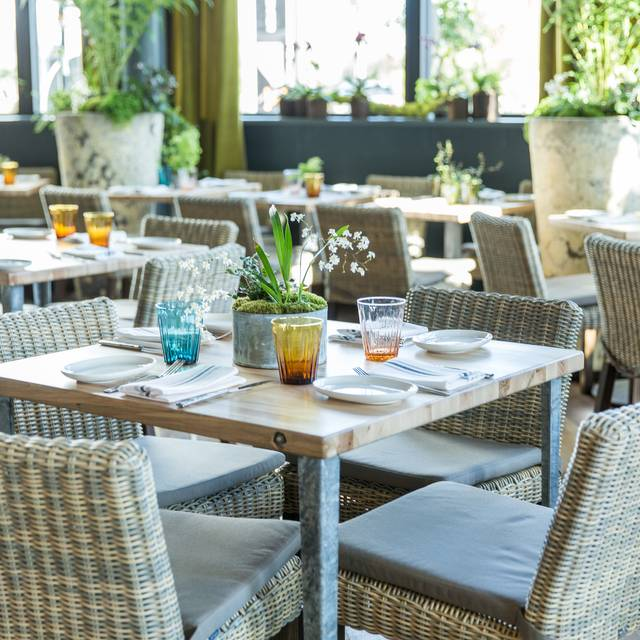 Terrain Cafe, Palo Alto, CA