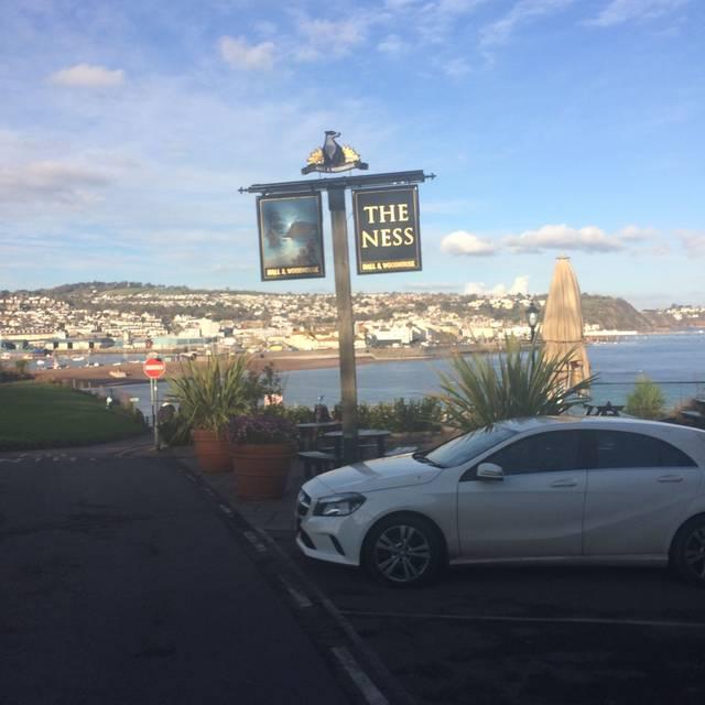 The Ness, Teignmouth, Devon