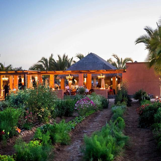 Farm To Table Restaurants With Gardens Gallery: Garden By Rancho Pescadero Restaurant