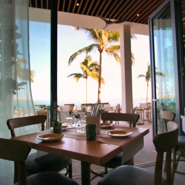 Amara At Paraiso Restaurant Miami Fl Opentable