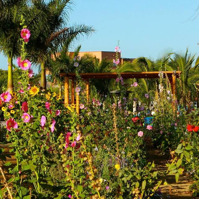 Garden By Rancho Pescadero Todos Santos - Garden by Rancho Pescadero, El Pescadero, BCS