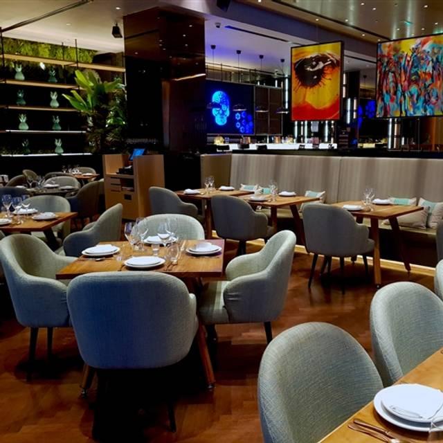 Peyote Restaurant, Dubai, Dubai